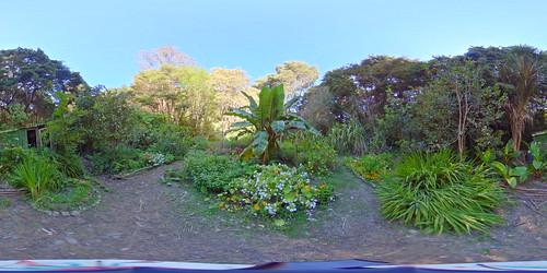 a31 Yin Yang Garden 2 shed
