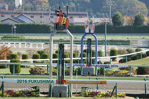 20161113_福島競馬場
