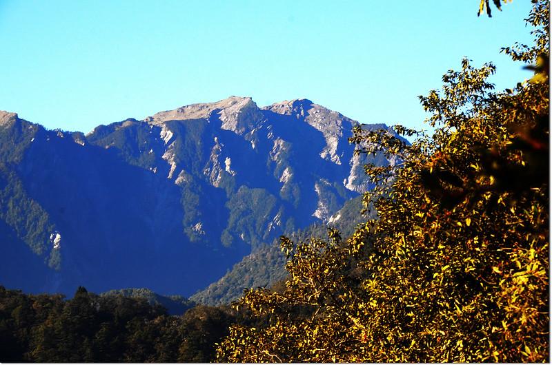 焦土山登山途中西南眺奇萊主山北峰