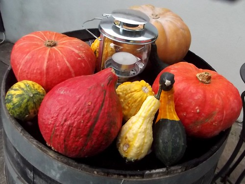Fruit of the season
