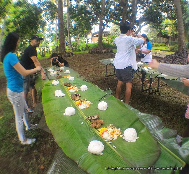 Boodle-Fight-Terra-Verde