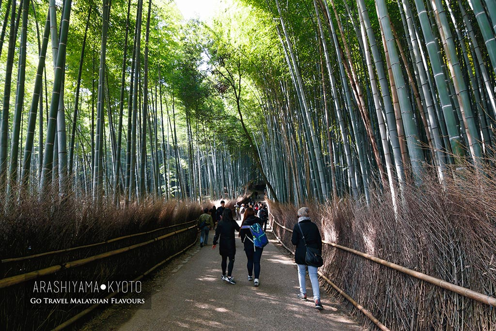 12 Things to Do in Arashiyama Kyoto Japan