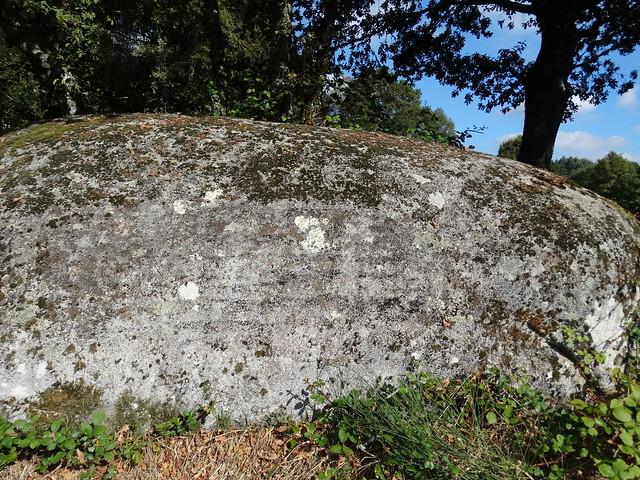 Petroglifo Agro das Calzadas en Guitiriz
