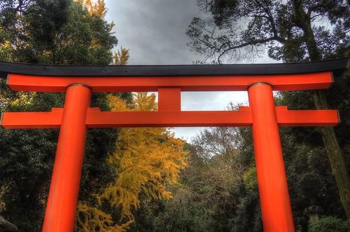 Kasuga Taisya Shrine on NOV 30, 2016 vol01 (1)