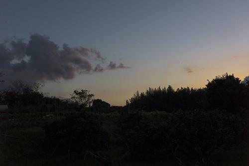 JA J1 29 022 福岡県粕屋郡新宮町 /  LEICA M9P × Summicron-M 35mm F2