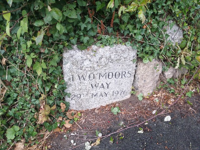 Day 7: Two Moors Way stone at Ivybridge