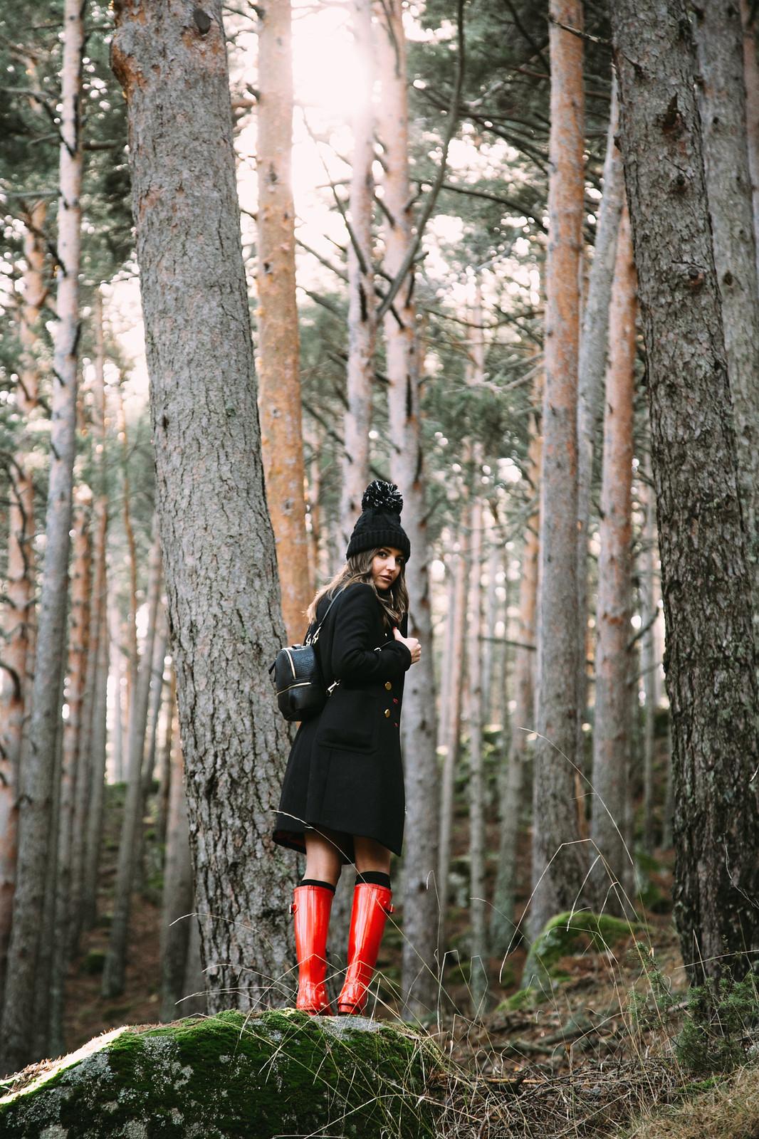 woods-17