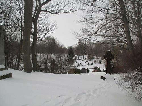 Mount Pleasant (8)