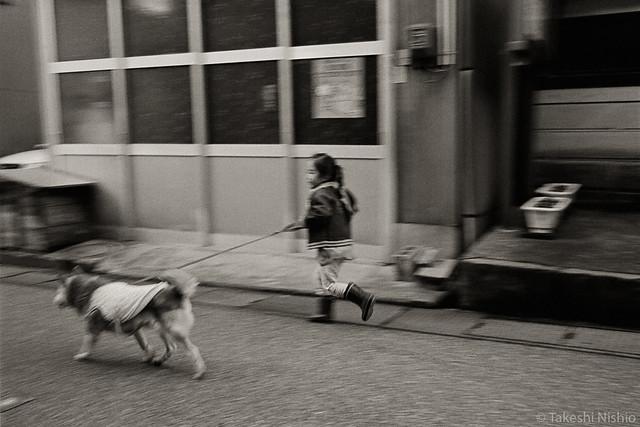 run around with a dog