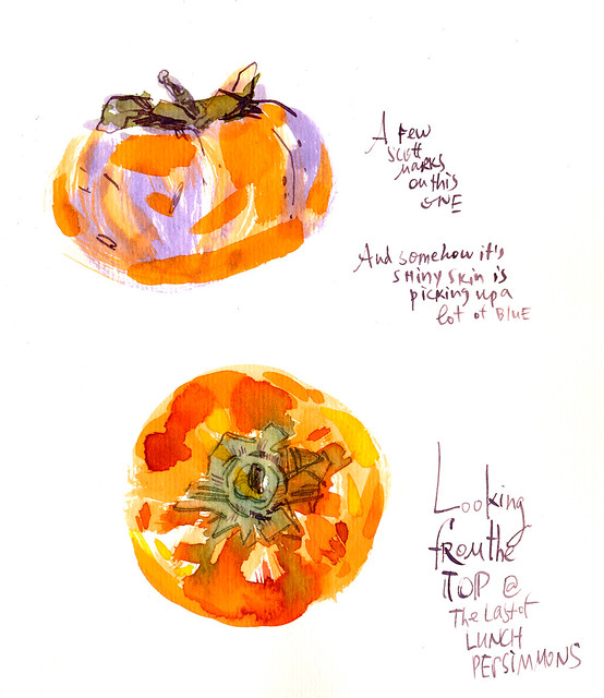 Sketchbook #100: Persimmons