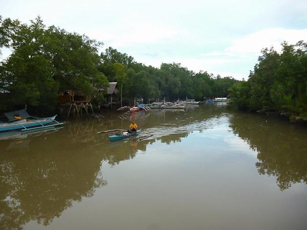 Bato creek
