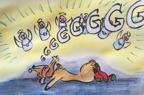 """Silent Night"" Filou dreams wearing his x-mas socks"