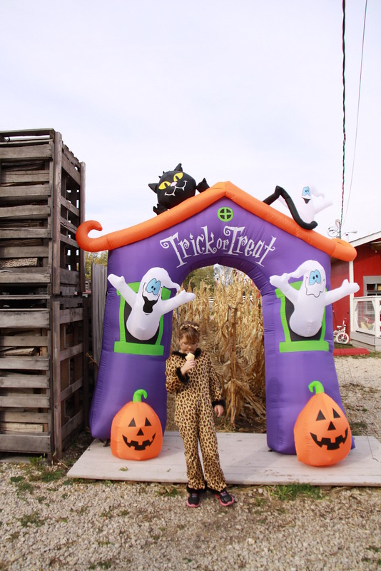 Halloween at the Coop (10)