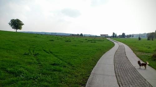 Via Regia 7 - Freyburg nach Naumburg