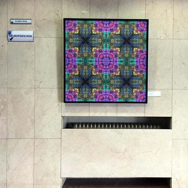 EXPOSICIÓN DE ALMAZUELAS EN LA CLÍNICA SAN FRANCISCO