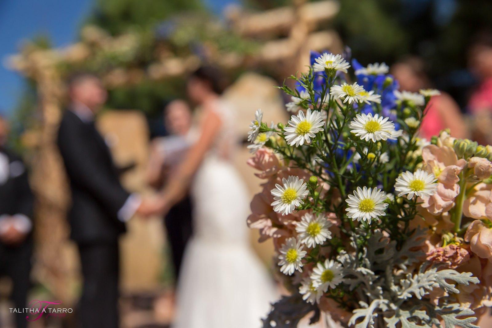 Nature Pointe Weddings