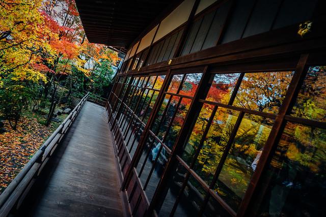 Kyoto_Eikando_21