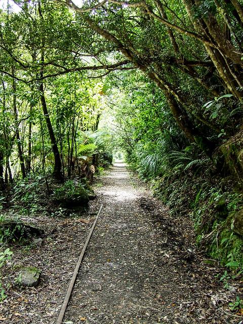 Charming Creek Walkway