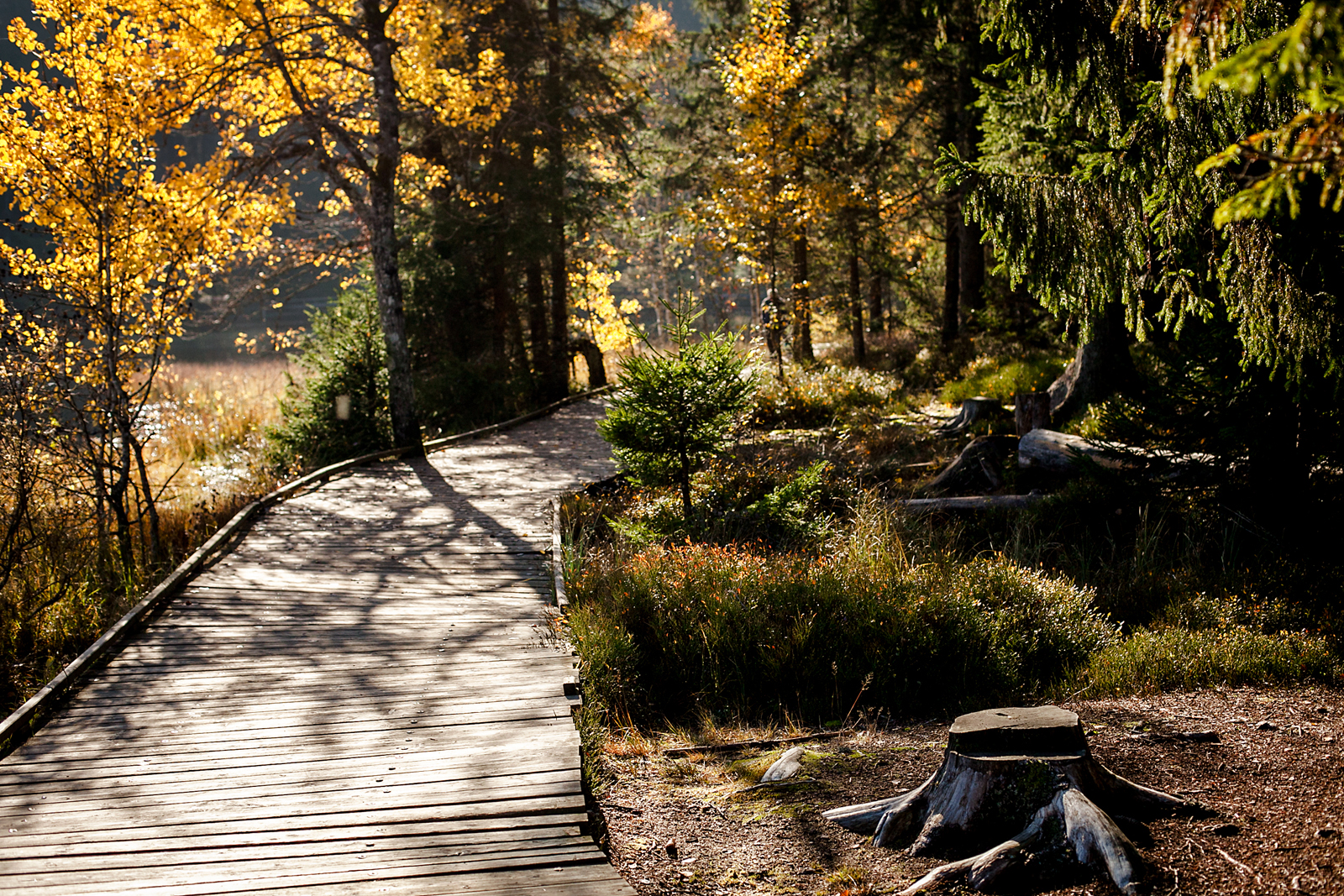 Jura & Three Lakes, Switzerland