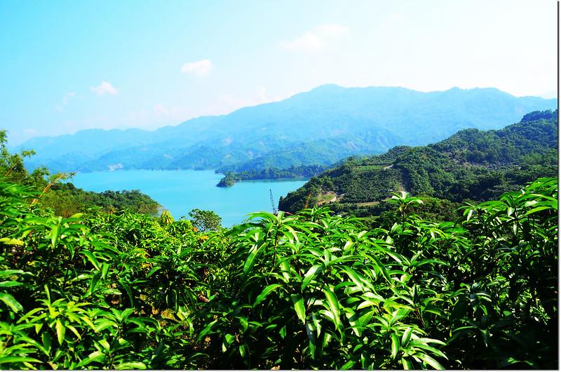 竹頭崎山果園登山口俯瞰南化水庫