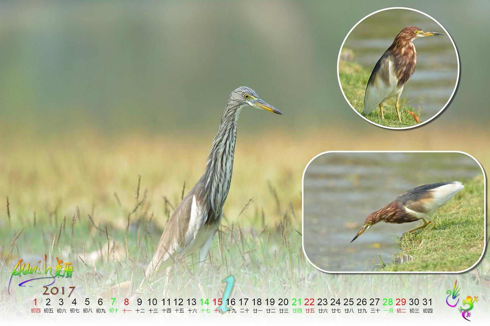 Calendar_03alder_01