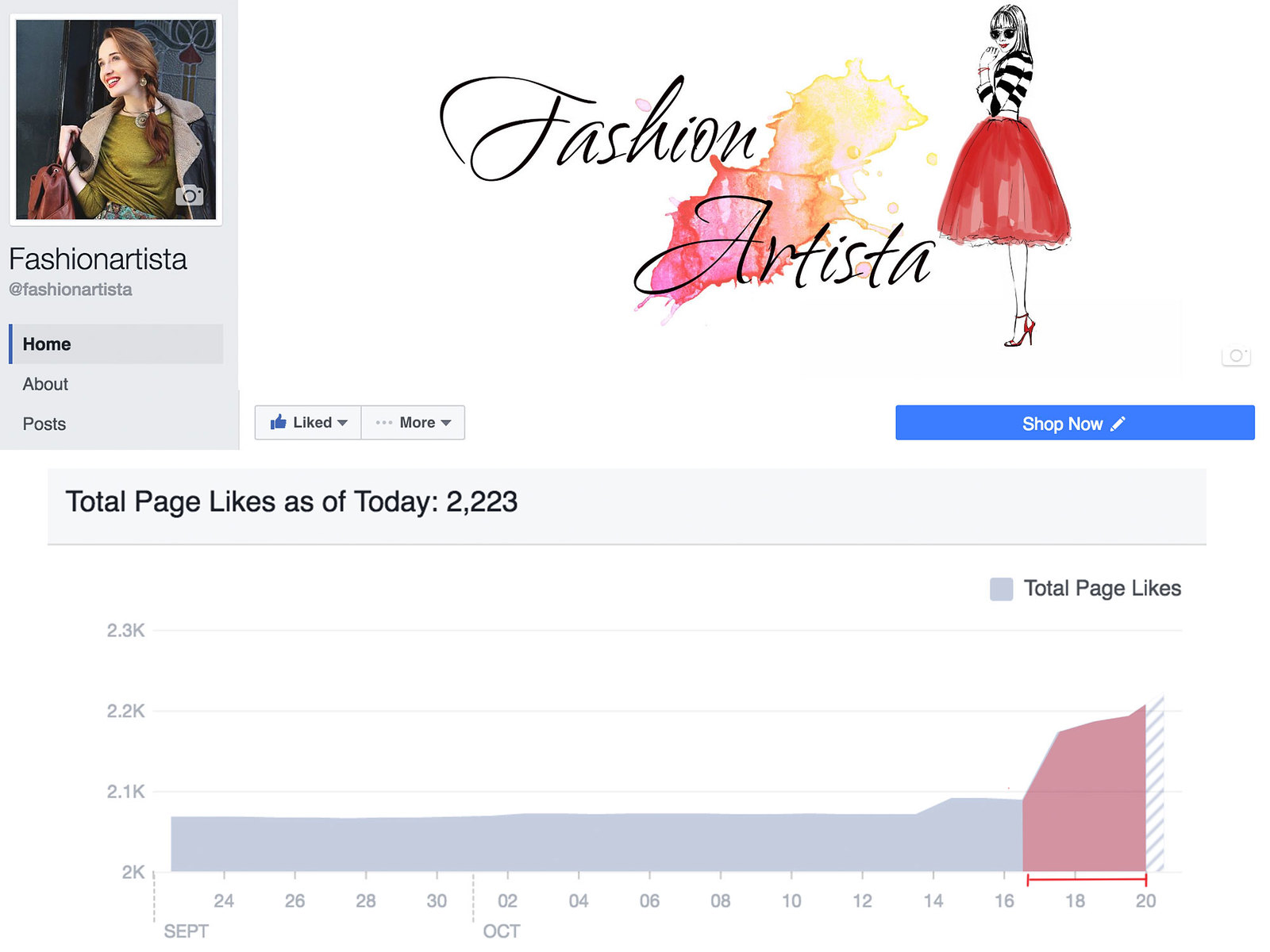 www.fashionartista.com GET MORE FACEBOOK PAGE LIKES WITH THIS WEIRD HACK