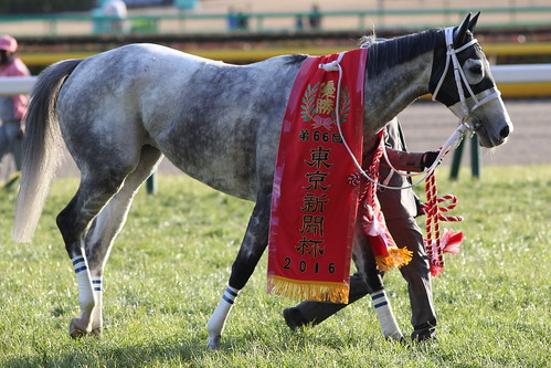 東京新聞杯勝ち馬 スマートレイアー2
