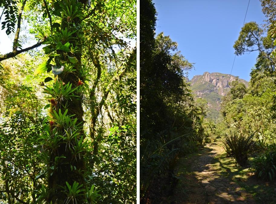 hike14-horz