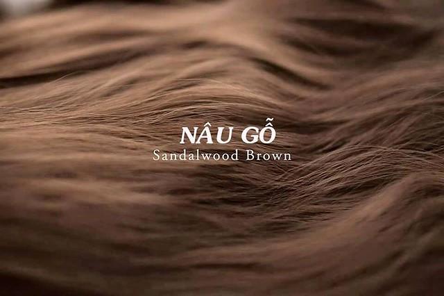 Mầu tóc nâu gỗ