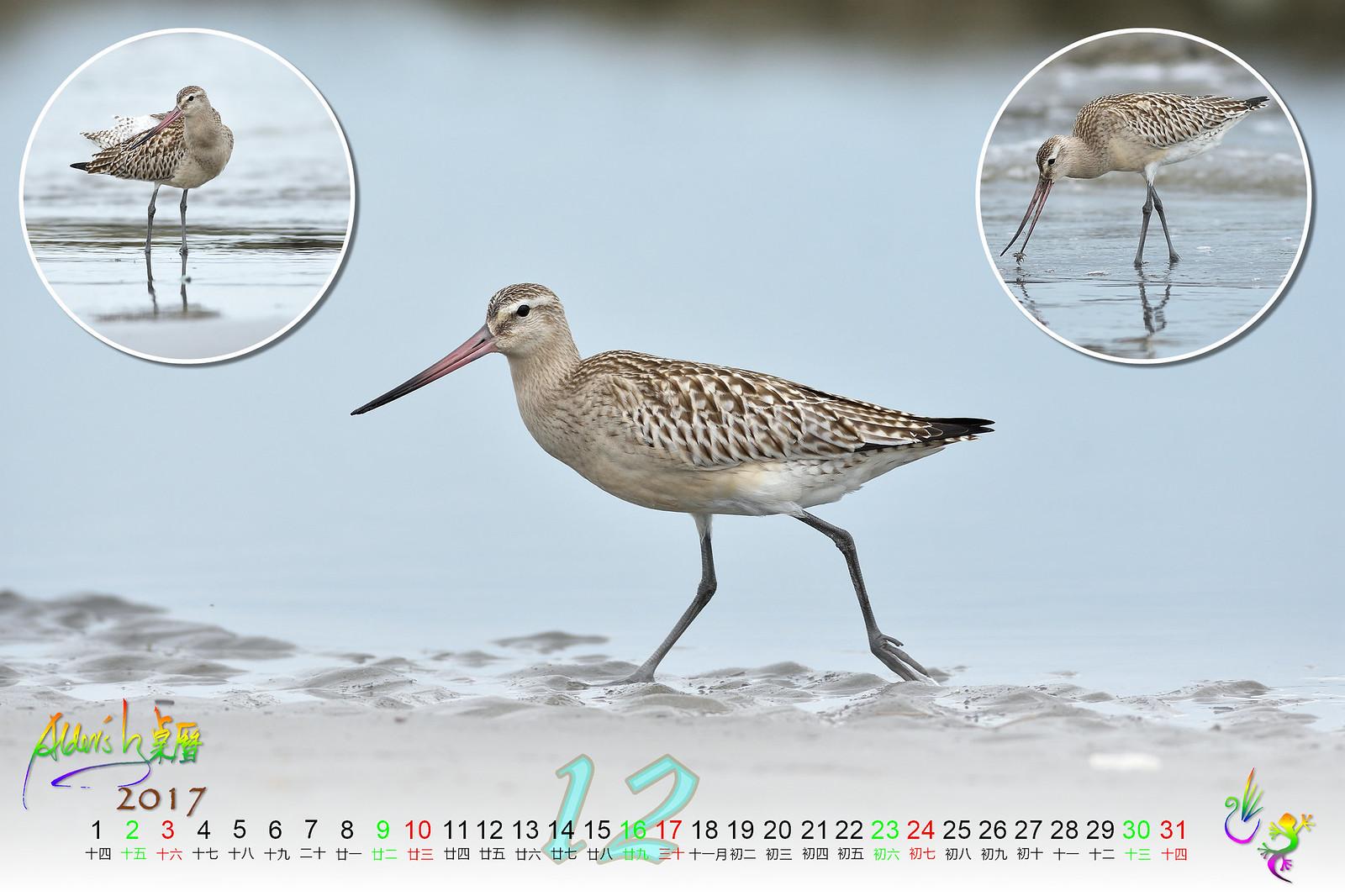 Calendar_03alder_12