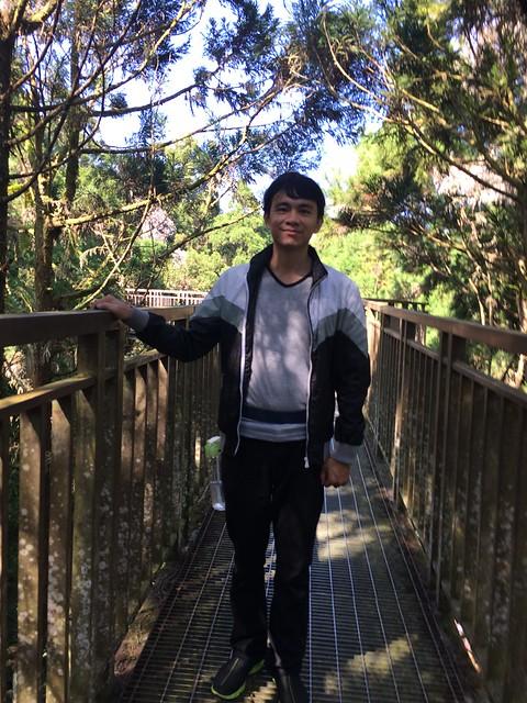 溪頭自然園區-天空走廊