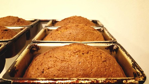 Pumpkin loaves are deeeelicious! ❤
