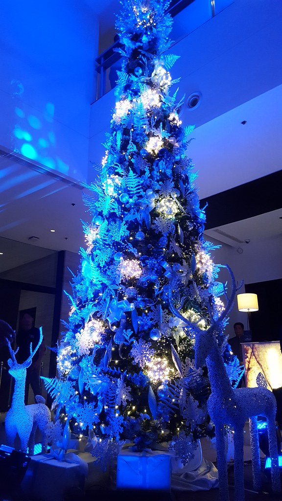 A beautiful blue silver themed christmas tree lights up - Blue themed christmas tree ...