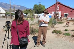 Michael Glenn interviewed by local media at Santa Paula Agricultural Museum, site of the first Dia de los Muertos Monarch Butterfly Festival in Ventura County