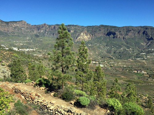 Gran Canaria - Risco Blanco in the winter