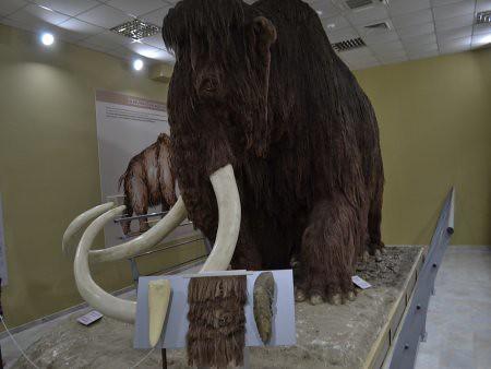 eco museum obiective turistice ruse 2