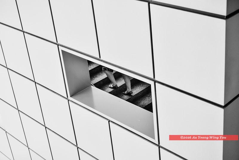 Singapore 2016: Life Among Geometry (8)