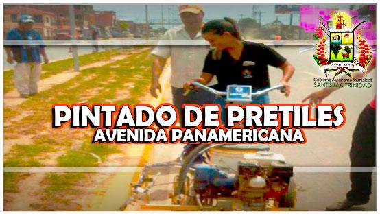pintado-de-pretiles-de-la-avenida-panamericana