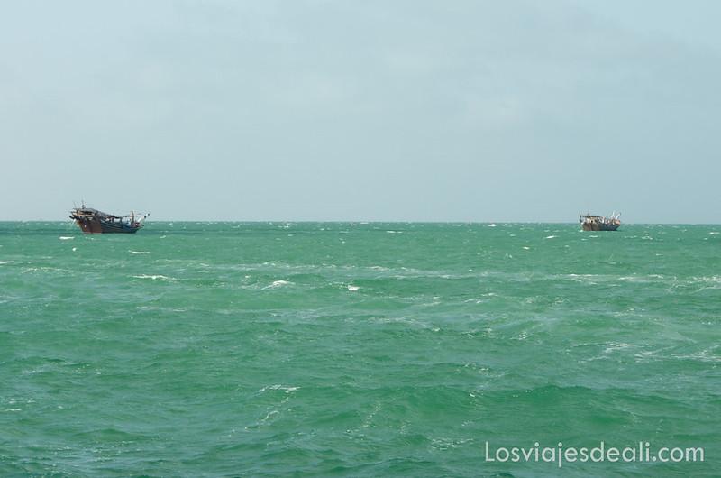 dhows en las aguas de Omán frente a la isla de Masirah