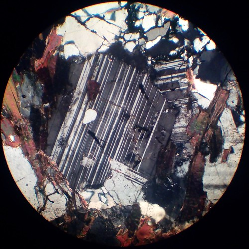 Plagioclase crystals (30 µm thin section, XPL)