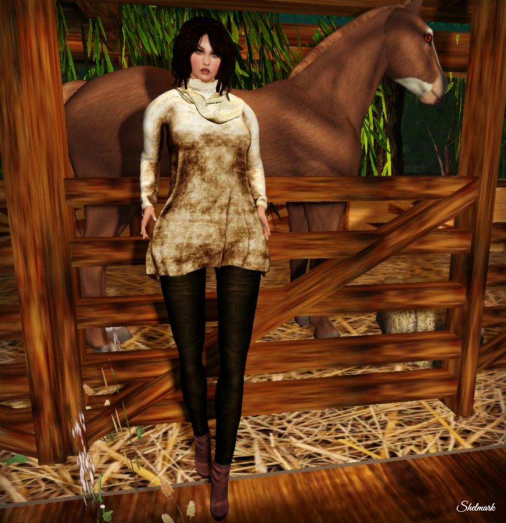 Blog_siss_boom_SatelliteTop_SparkBrown_2