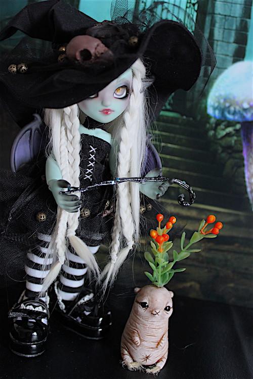 Nouvelle tenue pour ma petite Frost (Butterfly) p7 - Page 6 30821937925_e47d345945_b