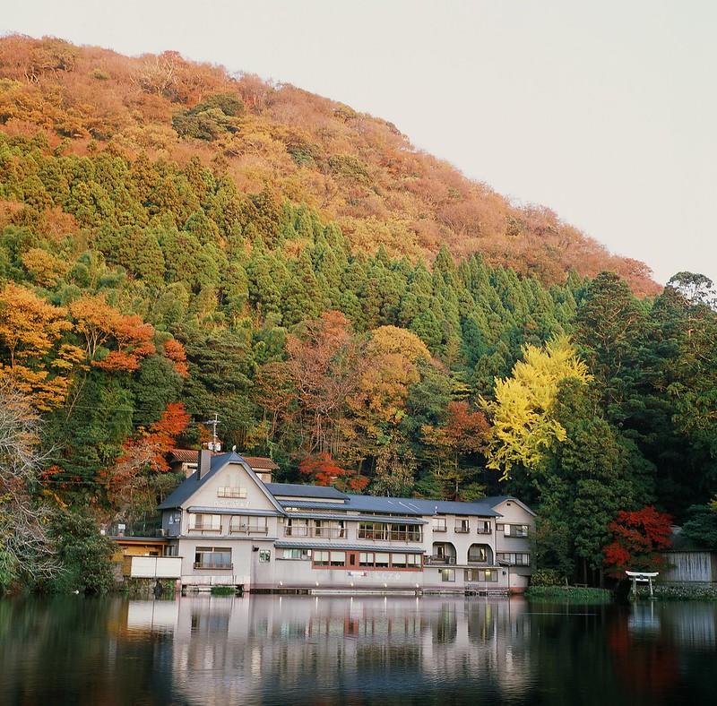 金鱗湖(夕方)|由布院