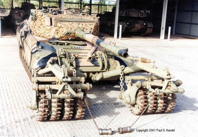 Leopard-Urdan-MCRS-australia-ash-1