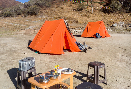Dzongri camp