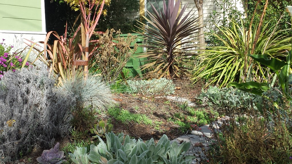 Garden interlude