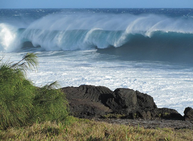 Ile de la Réunion 2010