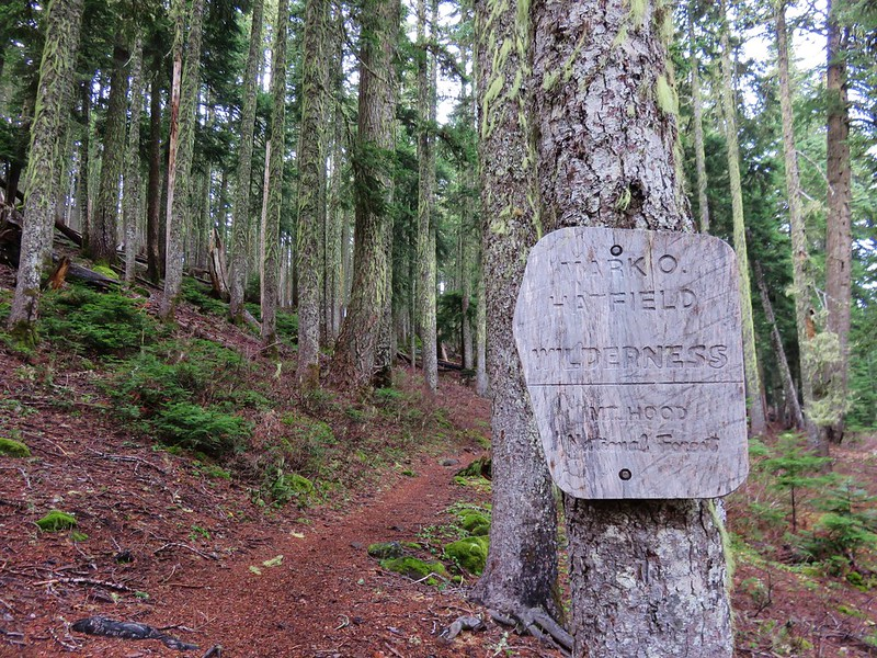 Mark O. Hatfiled Wilderness boundary near the Rainy Lake Campground