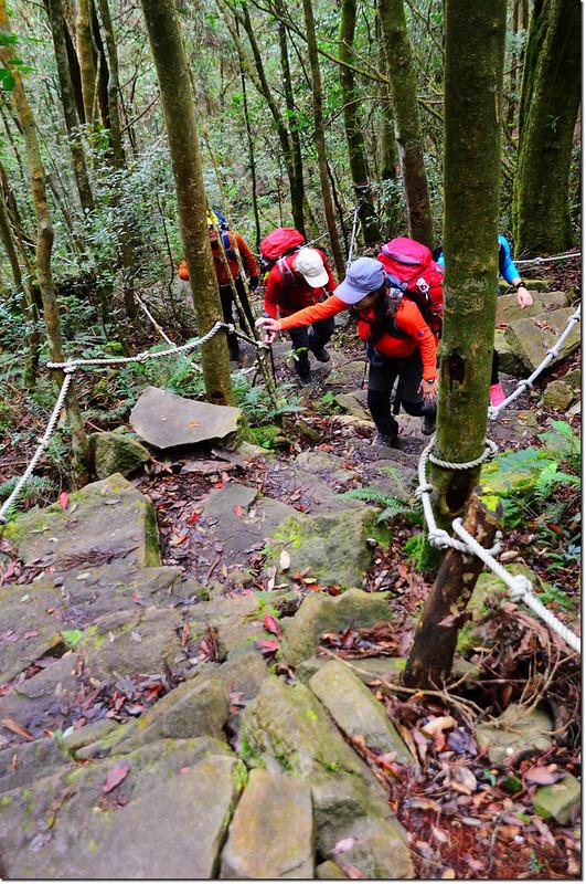 橫嶺山登山步道 2