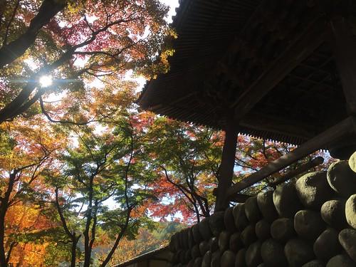 Shuzenji, Izu-city, Shizuoka, Japan